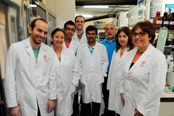 Alumnos de Bachillerato y 4º de ESO participan en la Semana de la Ciencia del CSIC-IPNA