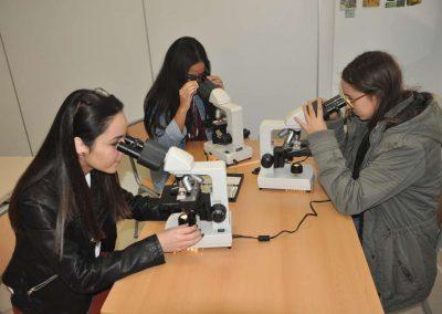 Bachillerato-laboratorio