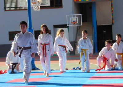 Karate-colegio-virgen-del-mar3