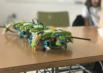 robotica-virgen-del-mar3